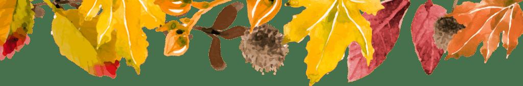 Autumn leaf header